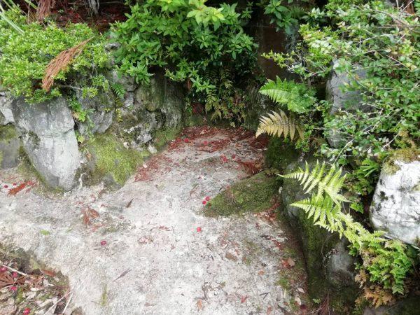 京都市左京区上高野池 防水工事