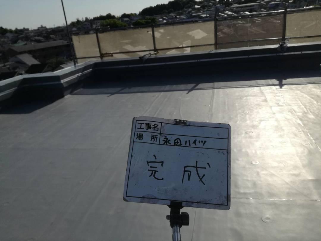 京都市左京区Nハイツ 屋上・外壁防水塗装工事のサムネイル