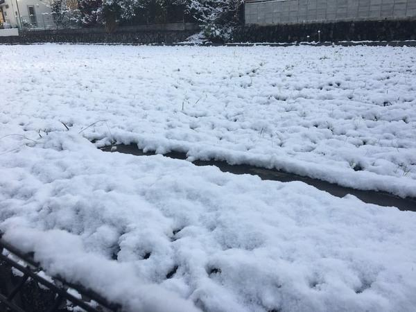 雪の日に雨漏りしやすい理由
